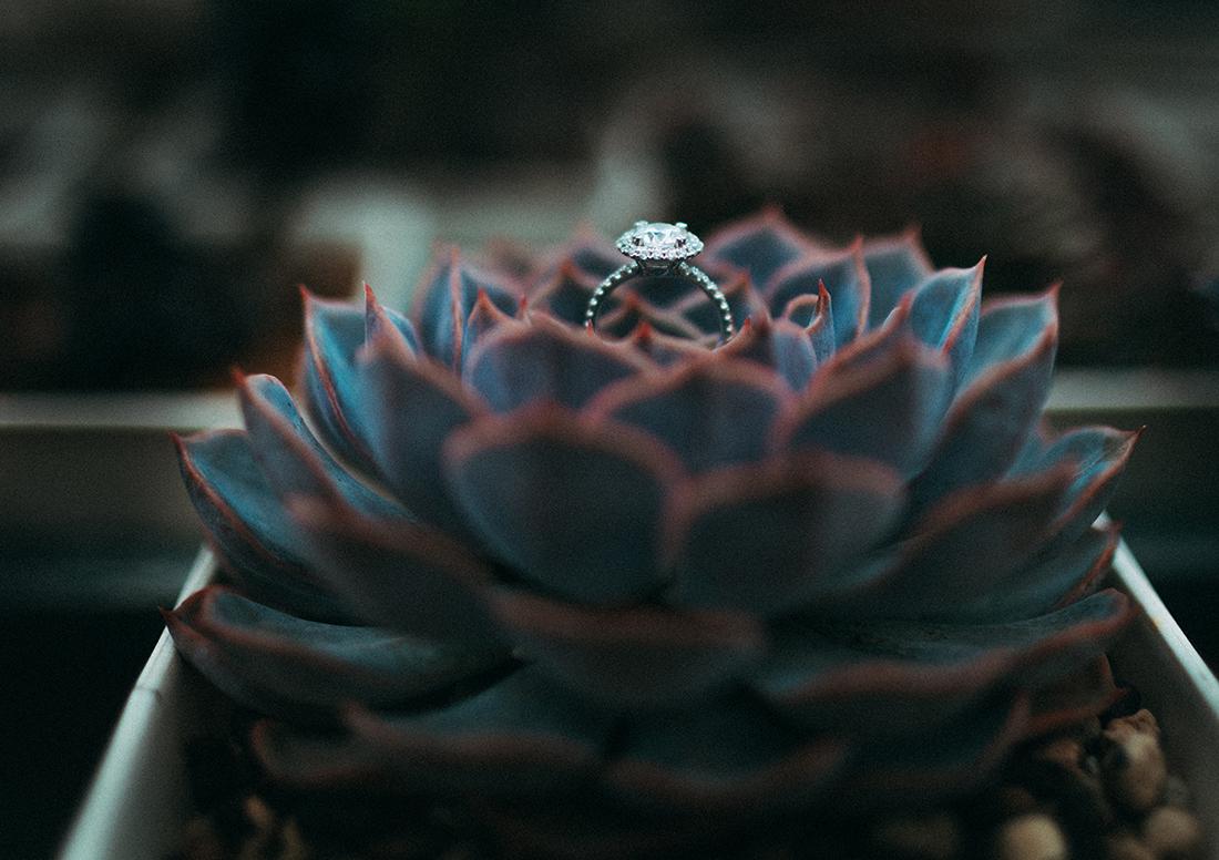 dalat wedding photographer 0